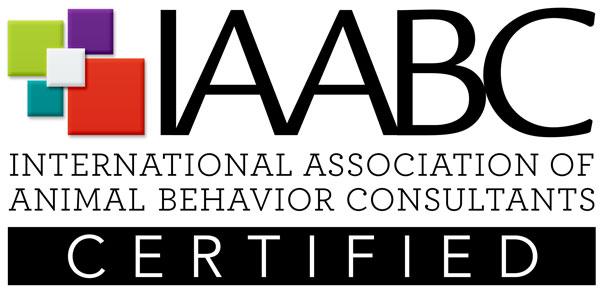 Gravitas Goldens Member Of IAABC
