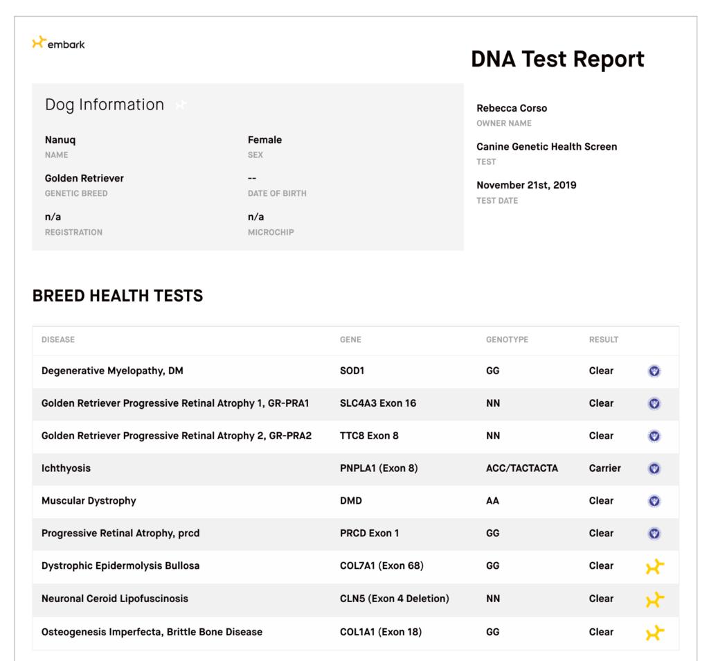 Gravitas Goldens Report Screenshot