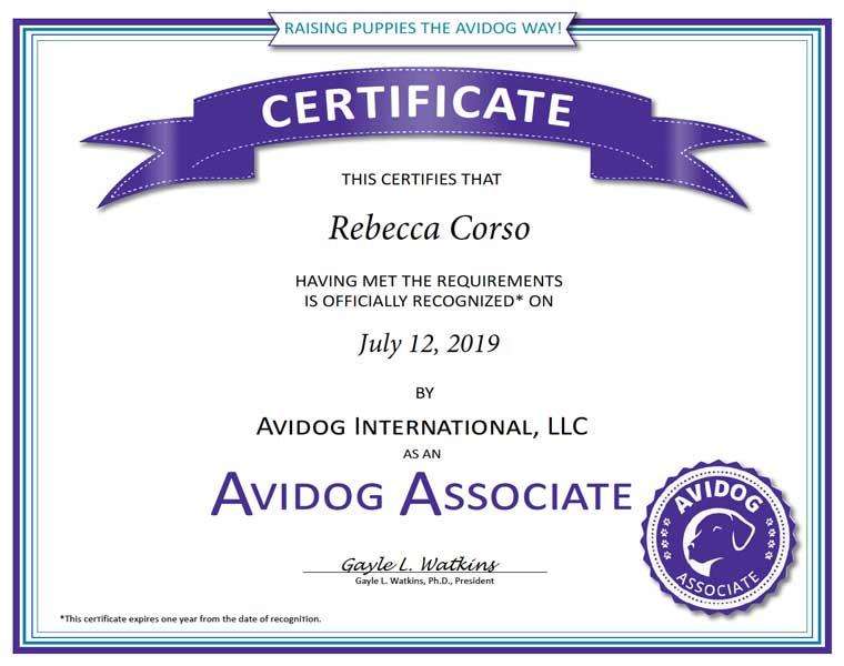 Rebecca Corso Avidog Certificate