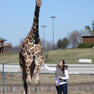 Rebecca With Giraffe