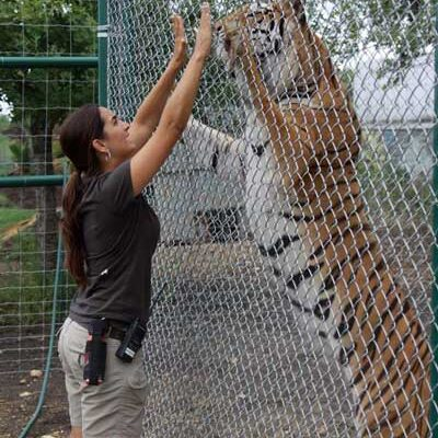 Rebecca With Tiger